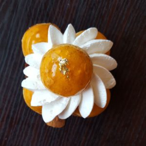 Patisserie, Vegan, Patisserie vegan, bonne adresse Paris, Bonne adresse Végan, bonne adresse paris végan, devenir végan, ou manger végan à paris