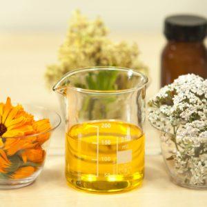 Calendula, les bienfaits de la calendula, naturopathe,