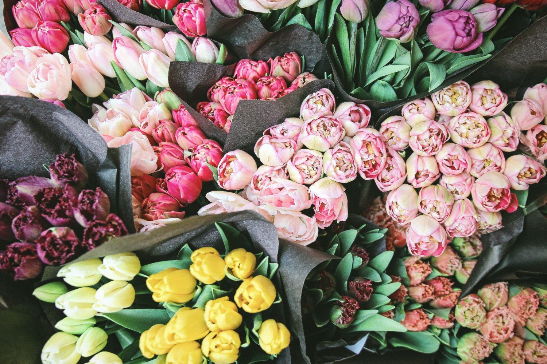 fleurs bien-être
