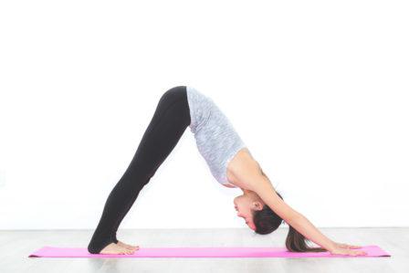 Yoga chien tête en bas