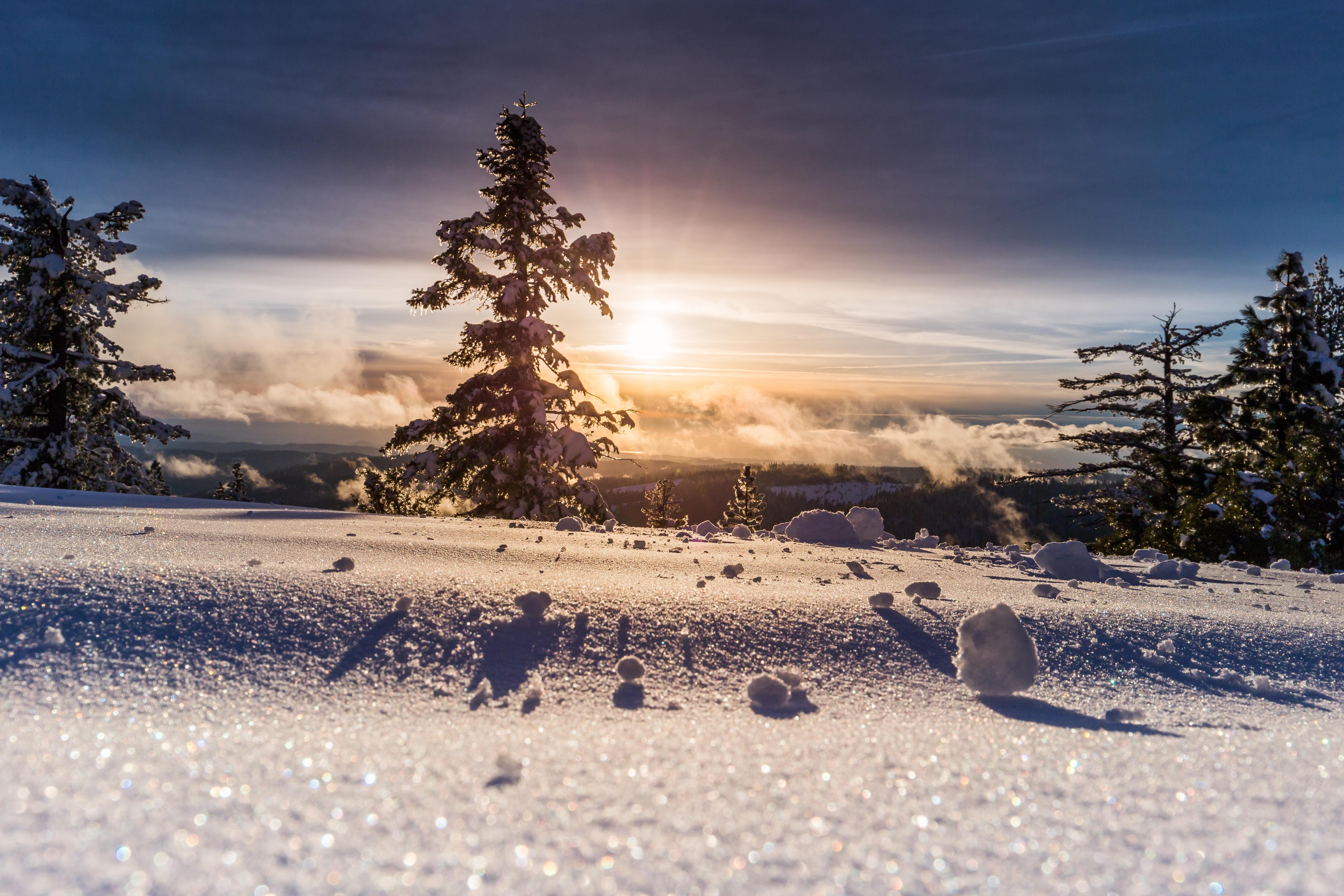 Neige sans ski