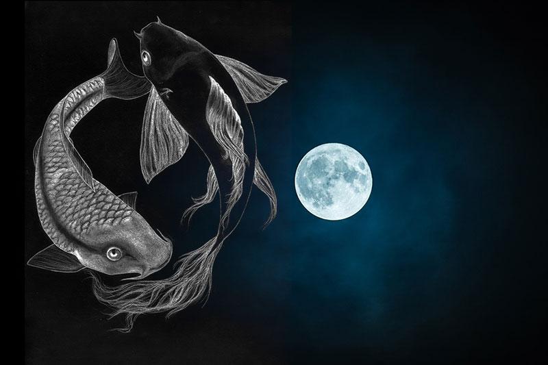 nouvelle lune, nouvelle lune en poissons,astrologie